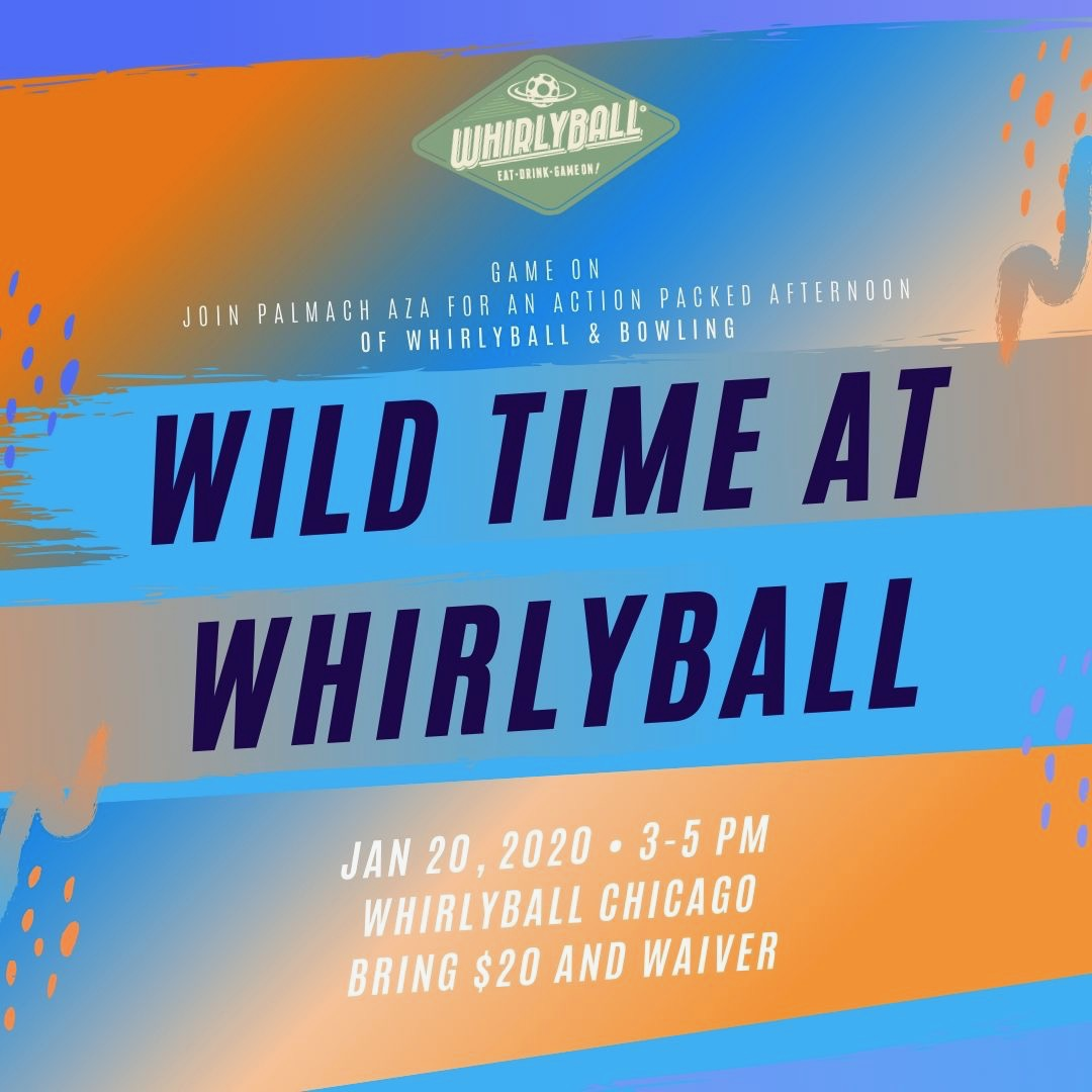 Wild Time at Whirlyball image