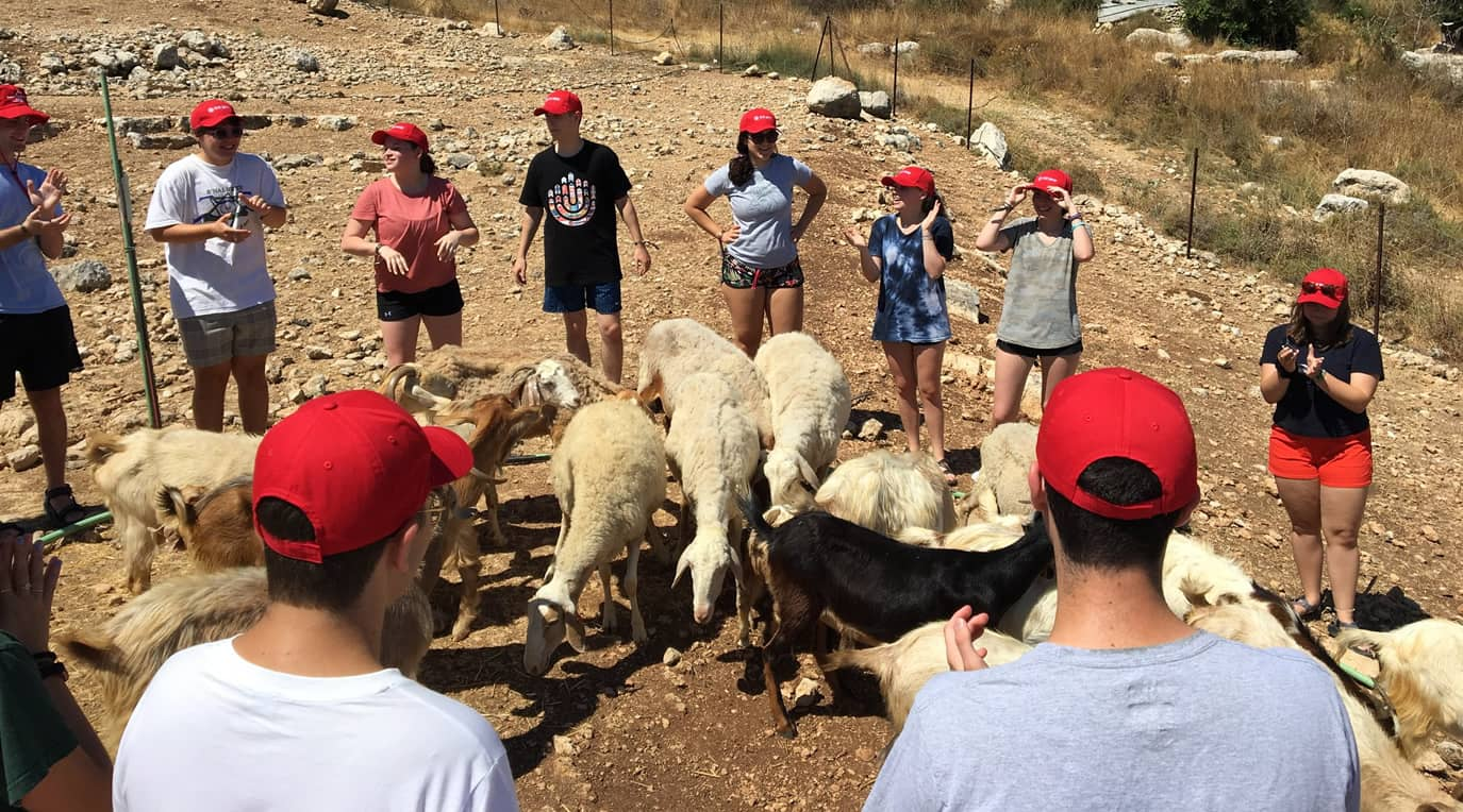 International Leadership Seminar in Israel (ILSI)  Image